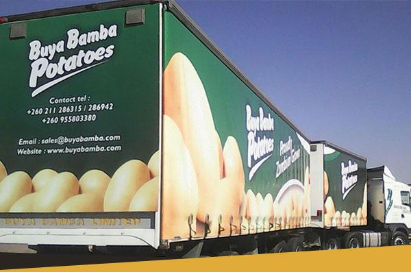 Logistics, Distribution & Outlets